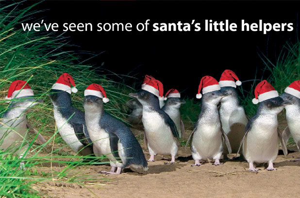we've seen some of santa's little helpers
